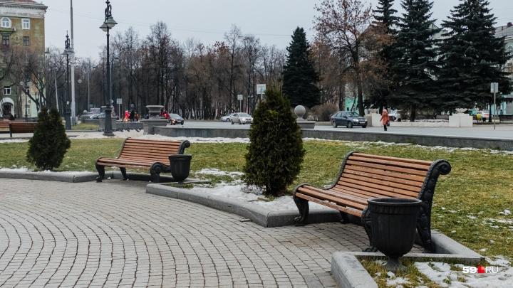 МЧС предупреждает о сильном ветре и снеге в Прикамье