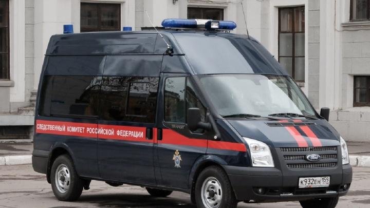 В Перми завели уголовное дело после того, как школьница вонзила нож в отчима, избившего её и бабушку