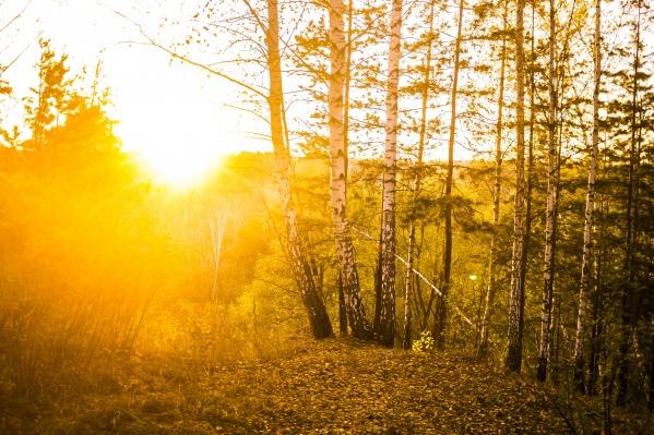 В Новосибирске наступили последние тёплые дни