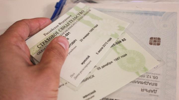 В России отменили зеленые карточки СНИЛС