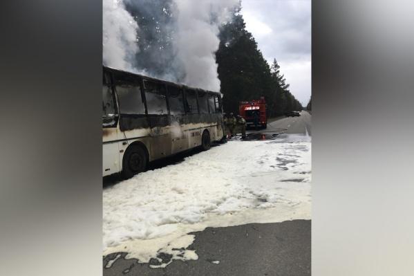 По данным МЧС России по Курганской области, ликвидировать пожар удалось в 14:38