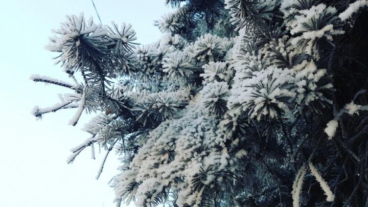 Время утепляться: аномально-холодная погода надвигается на Курганскую область