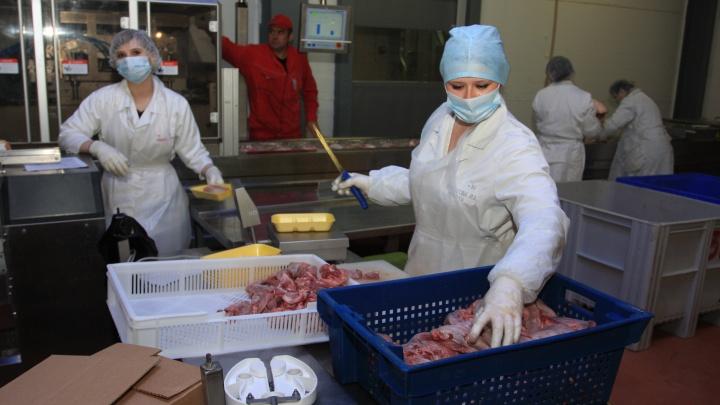 Томскому холдингу разрешили купить Кудряшовский мясокомбинат