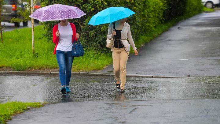 Начало этой недели в Екатеринбурге будет дождливым и ветреным