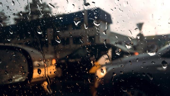 В Тюмени ожидается теплая неделя с дождями и грозами