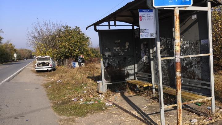 Открытые люки и стаи собак: в Ростовской области проверили дороги в школы
