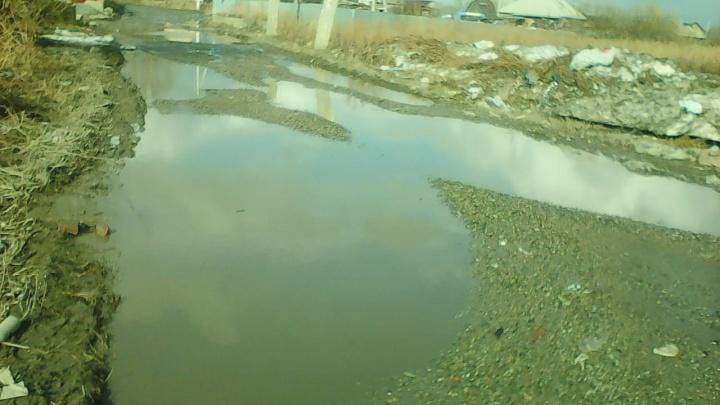 Новосибирцы попросили отремонтировать дорогу. Власти заявили, что её не существует