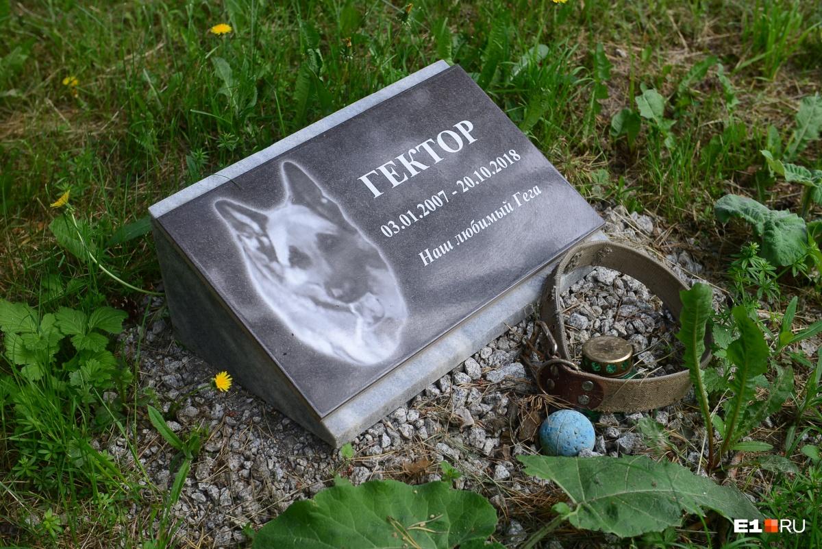 Хозяева оставляют у могилок вещи, принадлежавшие питомцам