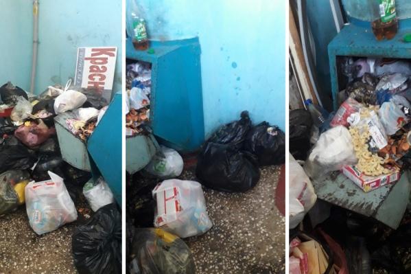 За выходные 7-й этаж дома на Щорса оказался завален мусором