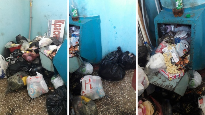 Жители подъезда на Щорса завалили этаж мусорными мешками за длинные выходные