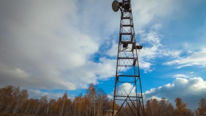 Семейная ОПГ: с южноуральских станций сотовой связи украли аккумуляторы на 2,5 млн рублей