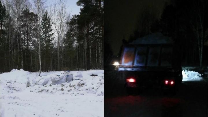 Тюменец снял на видео, как в лесу у пруда Лесного грузовики тайно сваливают мусор и снег