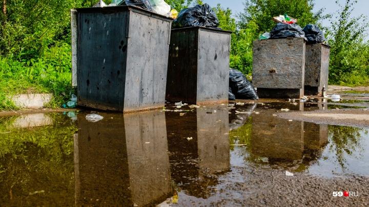 Нормативы, контейнеры, нелегальные свалки: проверяем, как идет «мусорная реформа» в Прикамье