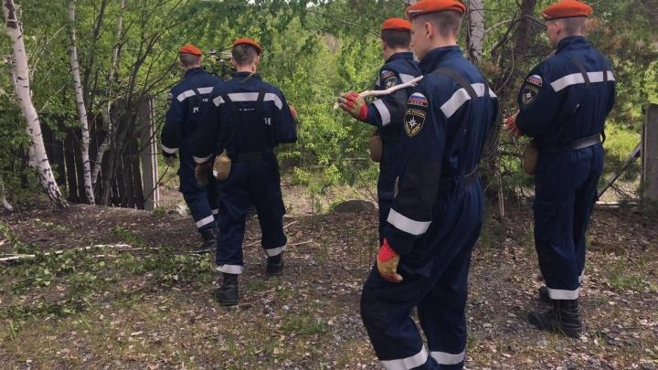 Волонтёры нашли за болотом под Рефтинским новые следы пропавшего 4-летнего Димы