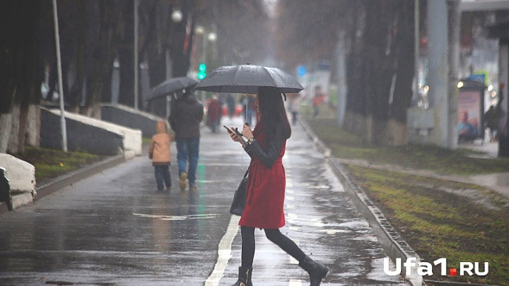 Погода в Башкирии: понедельник будет туманным и дождливым