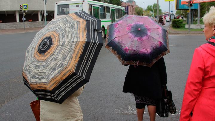 Омские синоптики спрогнозировали прохладное начало лета