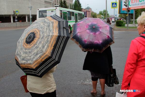 Начало лета в Омске может быть прохладным — из-за неустойчивого характера погоды всё ещё может поменяться