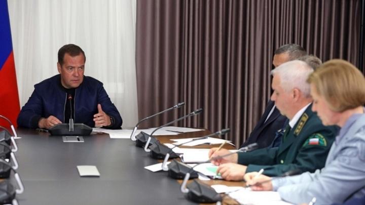 «Нужна дополнительная помощь»: в аэропорту Красноярска премьер Дмитрий Медведев обсудил пожары