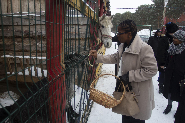 Кроме лошади можно было покормить и козла