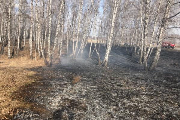 Сотрудники МЧС прибыли на место пожара уже через 10 минут