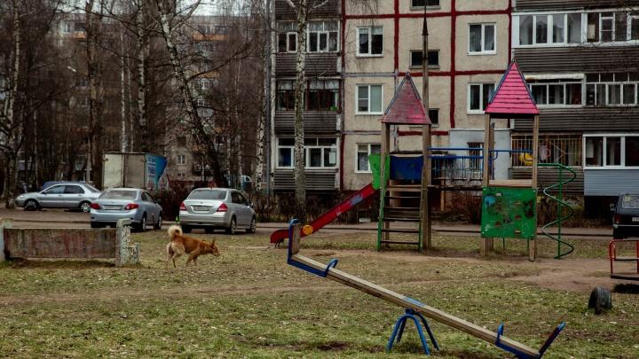 В Ярославле 9-летний мальчик, которого пытались похитить и увезти, назвал приметы машины