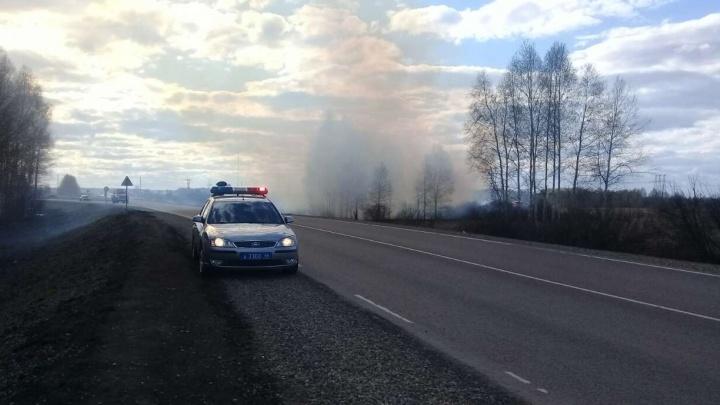 Теперь всё видно: движение на трассе Екатеринбург - Шадринск - Курган восстановлено