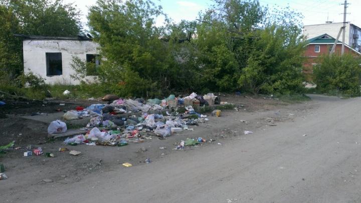 Прокуратура Курганской области занялась катайским мусором