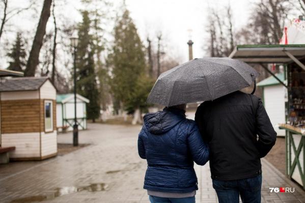 Дожди в Ярославле на этой неделе не будут затяжными