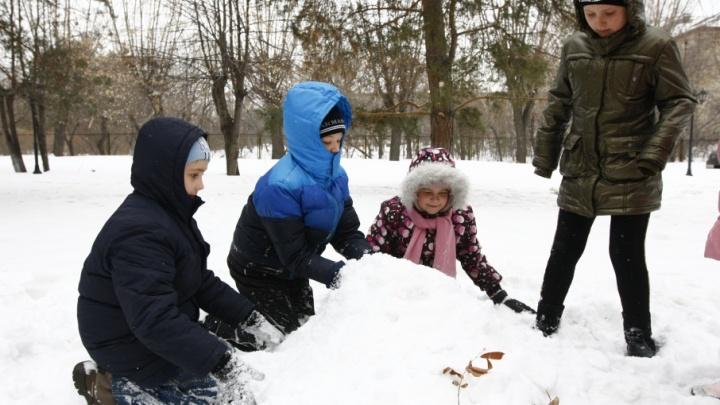 По заветам Путина: на Южном Урале определили размер выплаты многодетным семьям