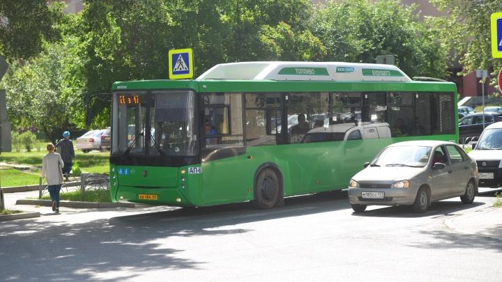 Автобусы, трамваи и троллейбусы изменят маршруты в дни ЧМ-2018