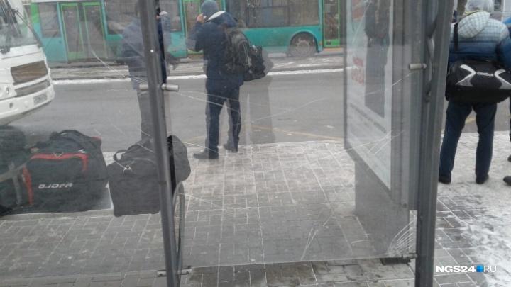 Страдаем из-за бомжей и вандалов: чиновники рассказали, кто мешает им ставить теплые остановки