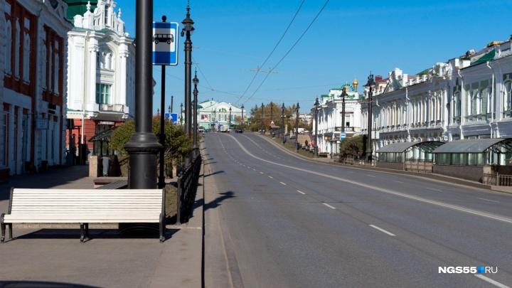 В Омске для городского пикника перекроют Любинский проспект