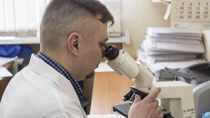Красноярские ученые научились находить яды в воде с помощью наноалмазов