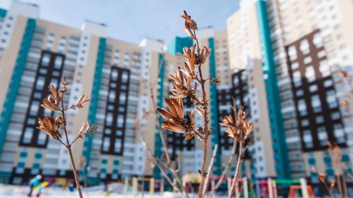 Свершилось: в Екатеринбурге начали строить дома, квартиры в которых дешевле, чем в пригороде