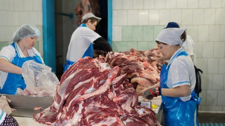 В Новосибирске появилось в продаже свежее охлажденное мясо утреннего забоя