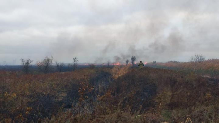 В Ростовской области потушили ландшафтный пожар