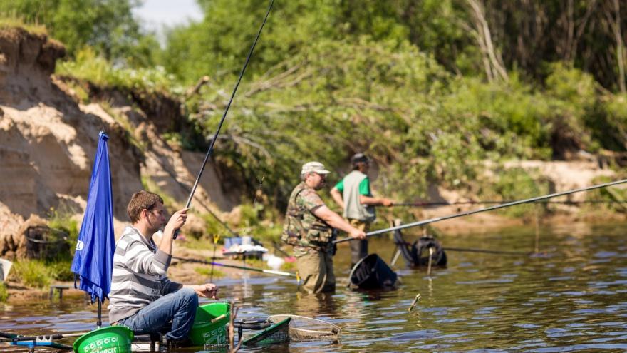 Вниманию рыбаков: до 10 октября запрещен лов рыбы сетями по побережью Двинского и Онежского заливов