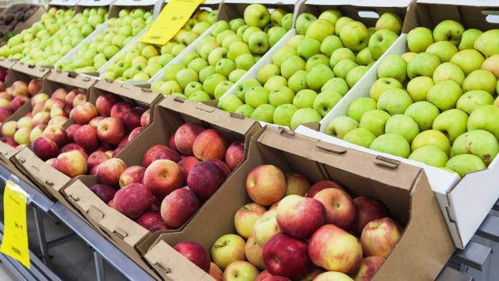 Яблоки по цене картошки и летние шины от 1700 рублей