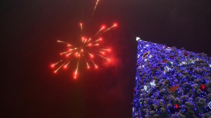 Гастрономический фестиваль и конкурсы: ростовчан приглашают на городскую елку