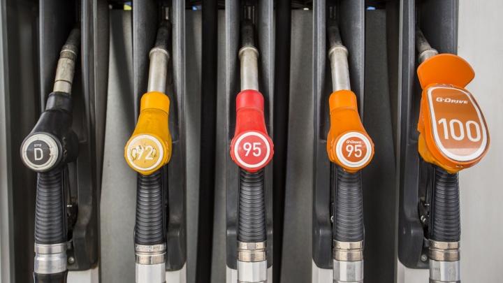 В Новосибирске продолжили дешеветь бензин и дизтопливо