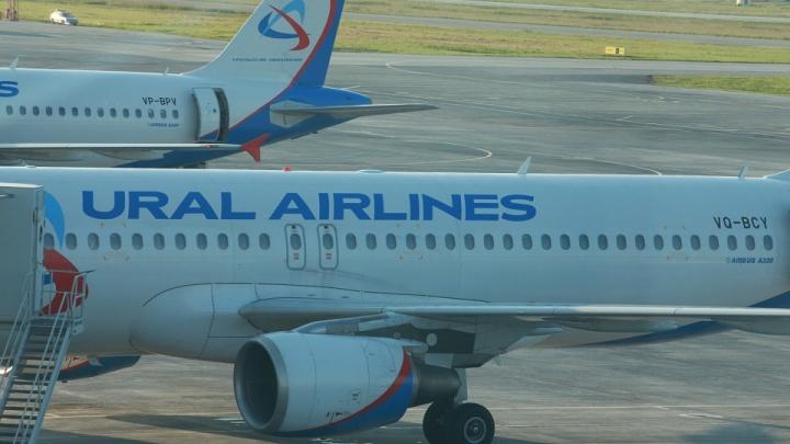 Самарцы смогут заказать питание на борту самолета при покупке билета