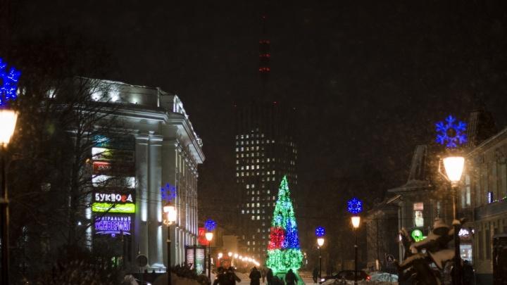 Первую новогоднюю ёлку в Архангельске откроют 24 ноября
