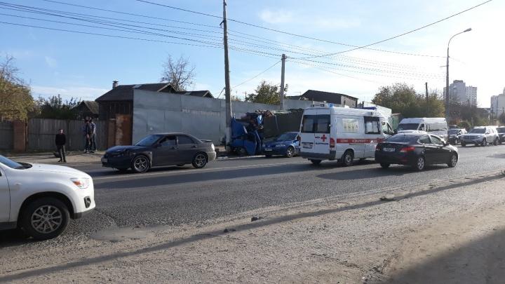 Из-за баранов на дороге в Волгограде выросла двухкилометровая пробка