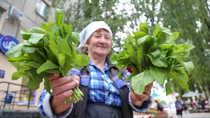 «Шайтан-палку поднимает»: изучаем цены на грибы и ягоды в Уфе