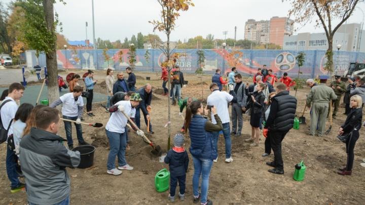 Дубы, кустарники, лианы: в Ростове отметили День древонасаждения
