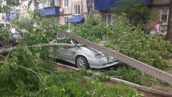 Поваленные столбы и деревья: в Стерлитамаке подсчитывают ущерб от урагана