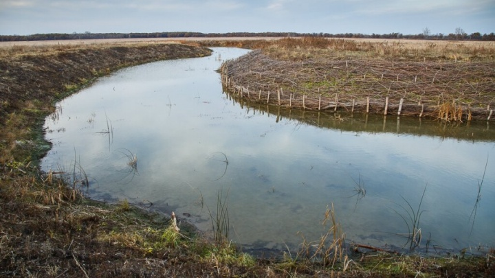 В Волгоградской области на Бузулуке утонул рыбак из Подмосковья