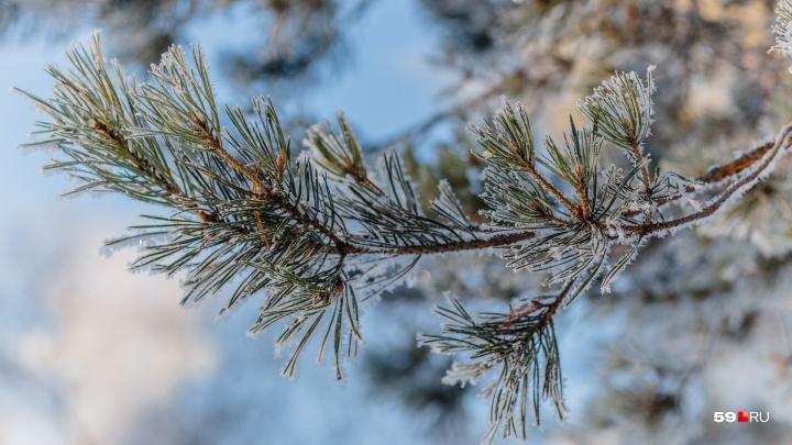 МЧС предупредило о гололеде и изморози в Прикамье