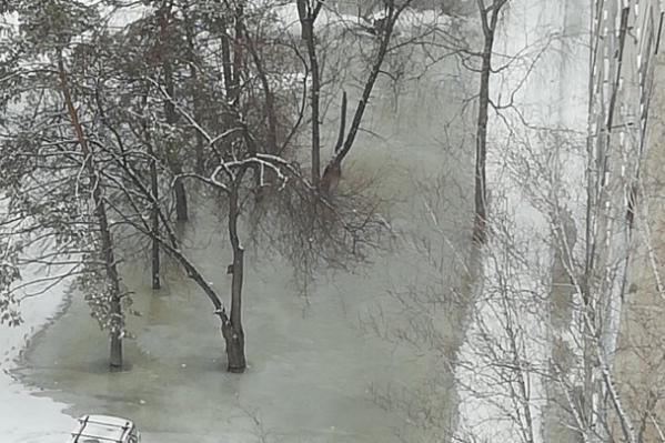 В «Горводоканале» сообщили, что этот двор топит ежегодно с наступлением оттепели