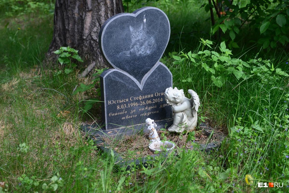 Кладбище домашних животных: зачем екатеринбуржцы ставят памятники питомцам и сколько за это платят